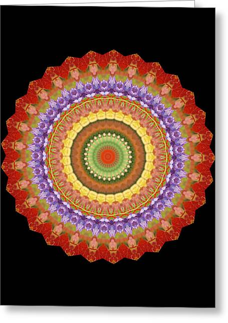 Chakra Spin Greeting Card by Barbie Wagner