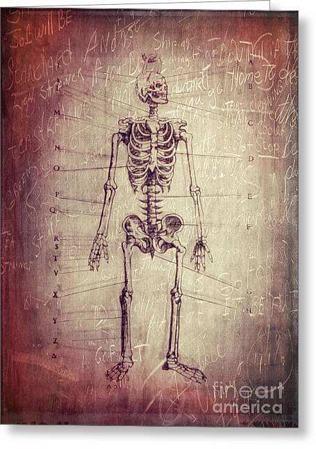 Evidence Greeting Cards - Chalkboard Skeleton Greeting Card by Edward Fielding