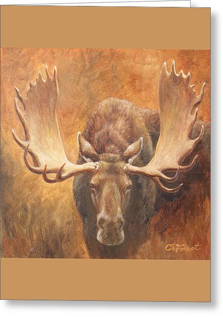 Hunting Trophy Greeting Cards - Bull Moose - Challenge Greeting Card by Crista Forest