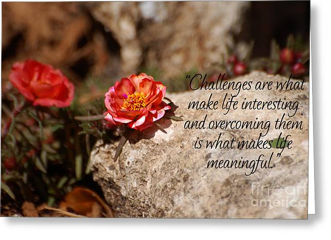 Challenges Greeting Card by Diane E Berry