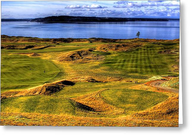 U.s. Open Photographs Greeting Cards - Chambers Bay Lone Tree Greeting Card by David Patterson