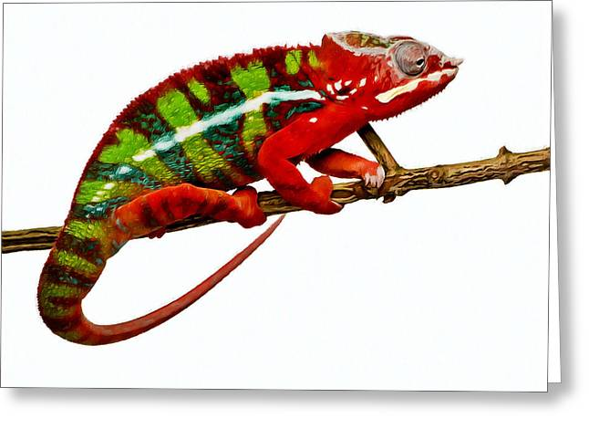 Animate Object Greeting Cards - Chameleon 1 Greeting Card by Lanjee Chee