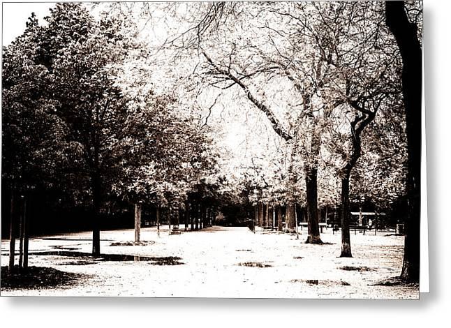 Champs Greeting Cards - Champ de Mars Trees Toned Greeting Card by Nomad Art And  Design