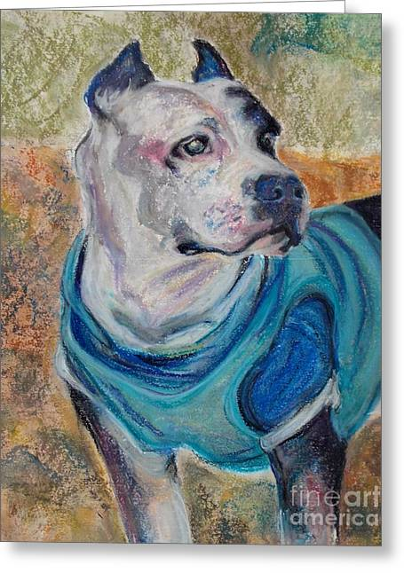 Best Sellers -  - Mindy Sue Werth Greeting Cards - Chance Head Shot Greeting Card by Mindy Sue Werth