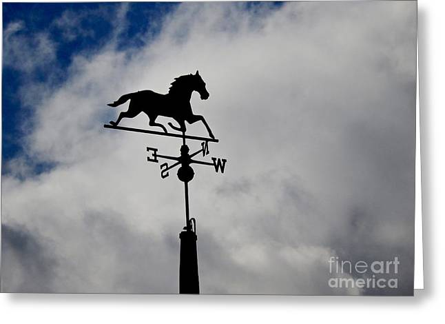 Weathervane Greeting Cards - Change In Direction Greeting Card by Faith Goldstein