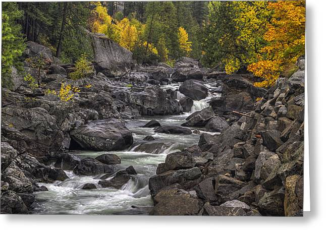 Autumn Art Greeting Cards - Change of Seasons Greeting Card by Mark Kiver