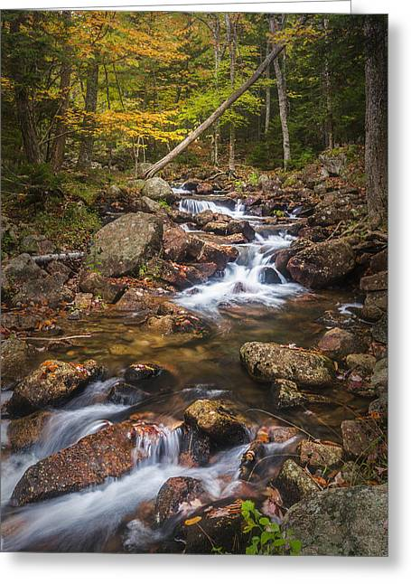 Maine Landscape Greeting Cards - Changes in the Water Greeting Card by Jon Glaser