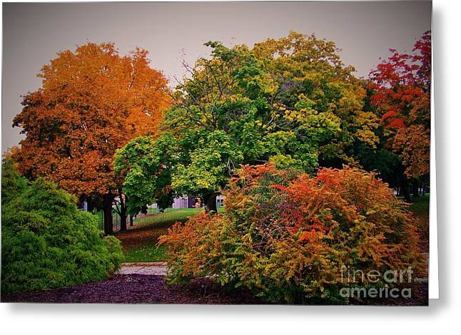 Indiana Autumn Greeting Cards - Changes Greeting Card by Rory Cubel