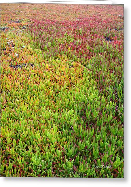 Large Scale Photographs Greeting Cards - Changing Landscape I Greeting Card by Donna Blackhall