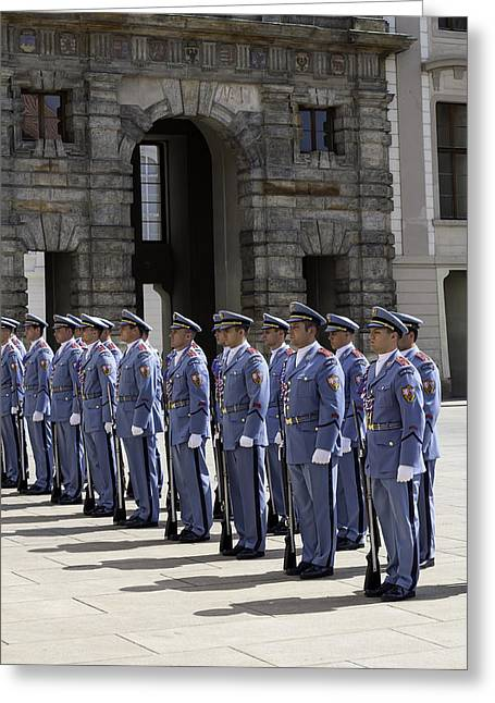 Replacing Greeting Cards - Changing of the guard. Greeting Card by Fernando Barozza