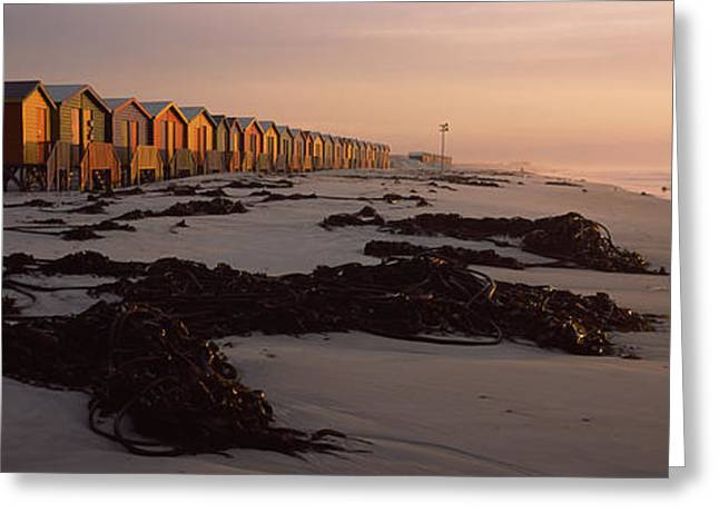 Changing Room Huts On The Beach Greeting Card by Panoramic Images