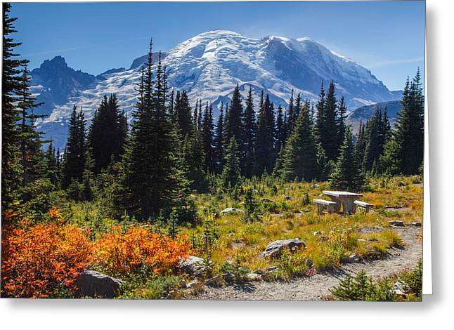 High Country Greeting Cards - Changing Seasons Greeting Card by Angie Vogel