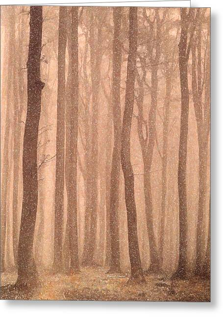 Sepia Pastels Greeting Cards - Changing Seasons Winter Greeting Card by Angela A Stanton