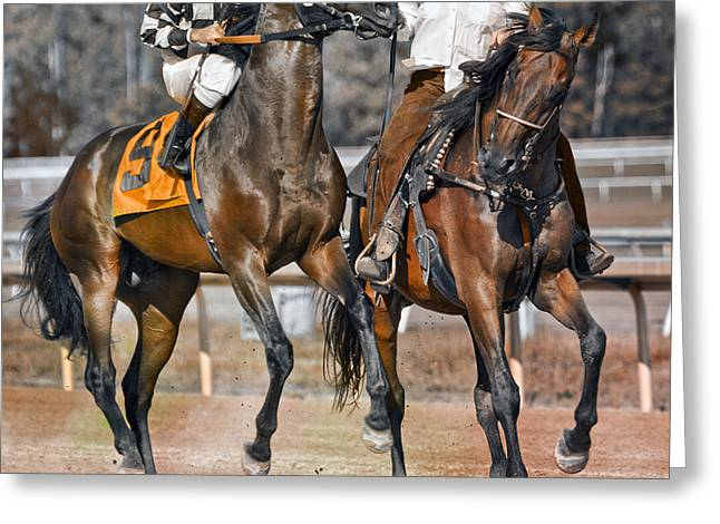 Endurance Greeting Cards - Chaperoned  Greeting Card by Betsy C  Knapp
