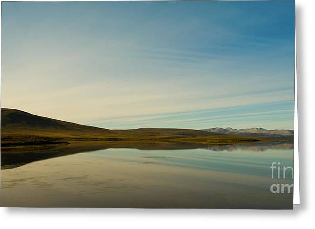 Evening Lights Greeting Cards - Chapman Lake Dempster Highway Greeting Card by Priska Wettstein