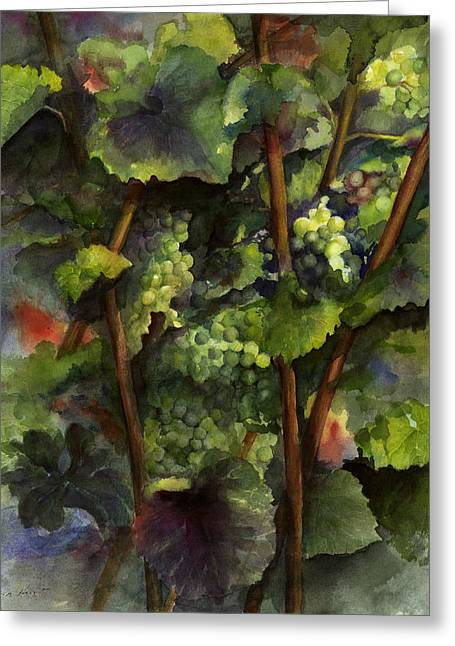 Grapevines Paintings Greeting Cards - Chardonnay dans lombre Greeting Card by Maria Hunt