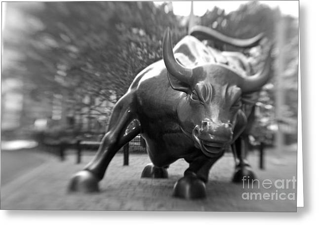 Manhattan Greeting Cards - Charging Bull 3 Greeting Card by Tony Cordoza