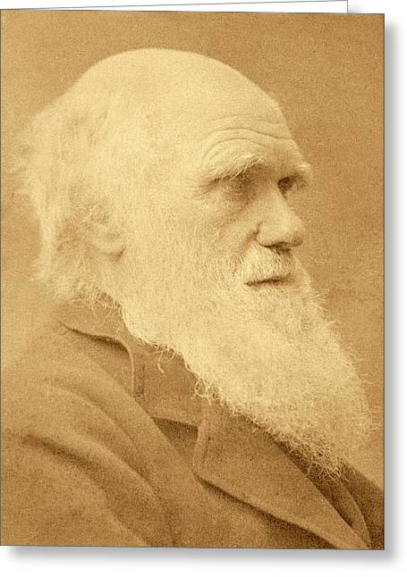 Charles Darwin Greeting Card by American Philosophical Society