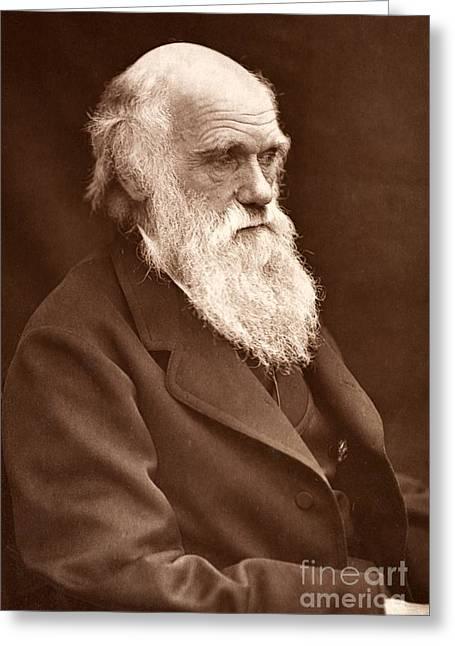 1874 Greeting Cards - Charles Darwin By Son Leonard, 1874 Greeting Card by Paul D. Stewart