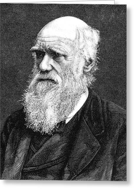 Charles Darwin Greeting Card by Collection Abecasis