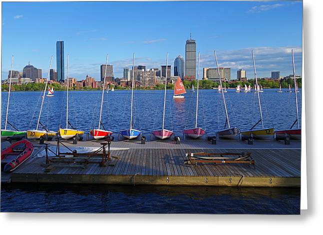 Charles River Greeting Cards - Charles River Sailboats Greeting Card by Toby McGuire