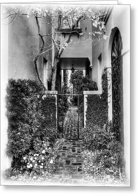 Charleston Sidewalk Greeting Cards - Charleston Charm 2 bw Greeting Card by Mel Steinhauer