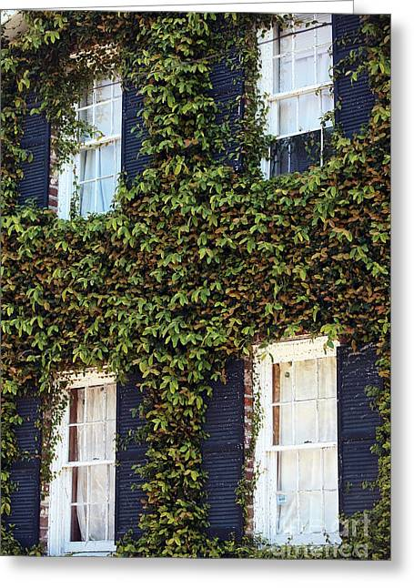 Old School House Greeting Cards - Charleston Ivy Greeting Card by John Rizzuto