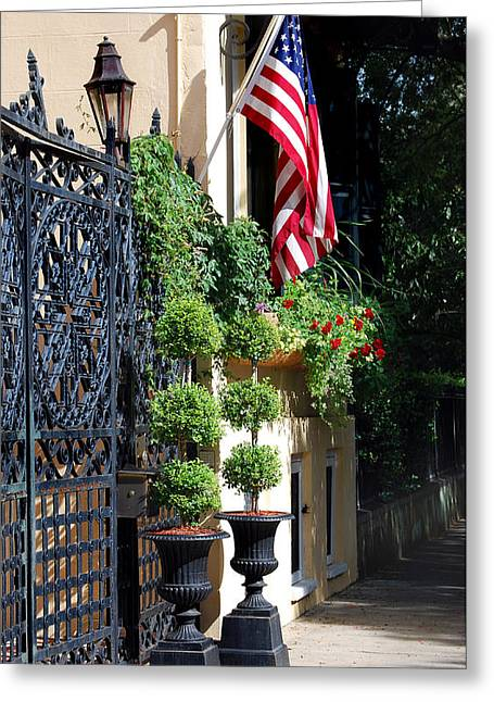 Scenic Woodlands Greeting Cards - Charleston Patriot Greeting Card by Skip Willits