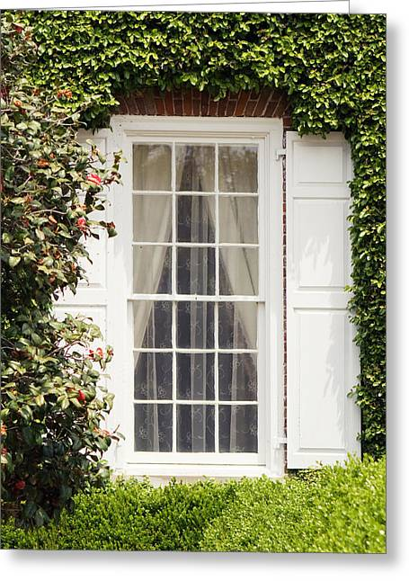 Historic Home Greeting Cards - Charleston Plantation Window Greeting Card by Stephanie McDowell