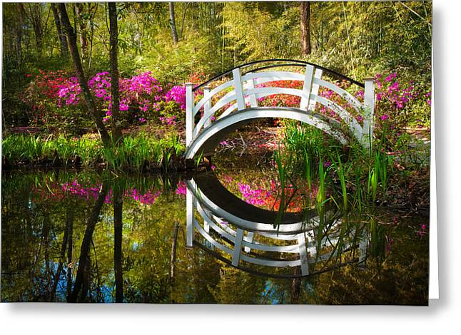 Charleston SC Magnolia Plantation Spring Blooming Azalea Flowers Garden Greeting Card by Dave Allen