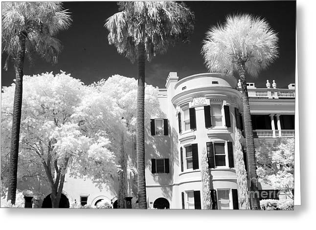 Infrared Fine Art Greeting Cards - Charleston South Carolina Black White Battery Park Greeting Card by Kathy Fornal
