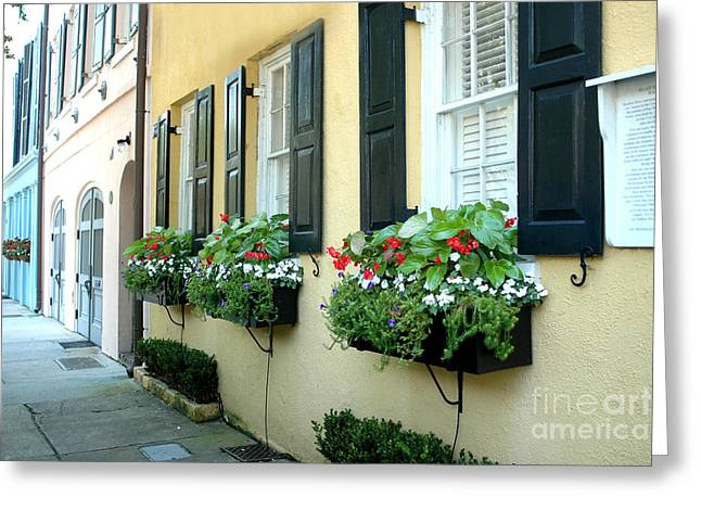 Rainbow Row Greeting Cards - Charleston South Carolina - Rainbow Row Yellow and Black Shutters and Window Boxes Greeting Card by Kathy Fornal