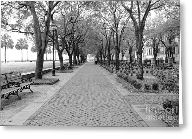 Park Benches Photographs Greeting Cards - Charleston Waterfront Park Walkway - Black and White Greeting Card by Carol Groenen