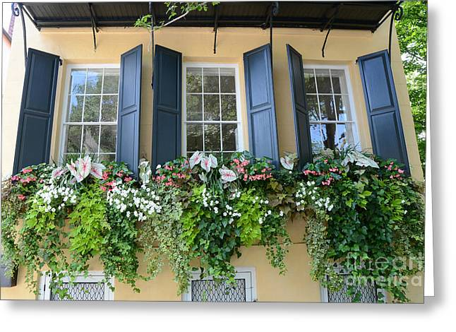 Window Box Greeting Cards - Charleston Window Box Flower Photography - Charleston Yellow Blue Green Floral Window Boxes Greeting Card by Kathy Fornal