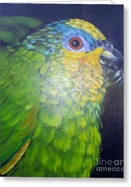 Lomax Greeting Cards - Charlie Greeting Card by Kate Lomax