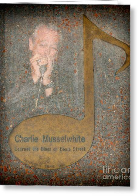 Tennessee Landmark Greeting Cards - Charlie Musselwhite Note Greeting Card by Donna Van Vlack