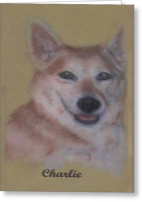 Pat Mchale Greeting Cards - Charlie Greeting Card by Pat Mchale