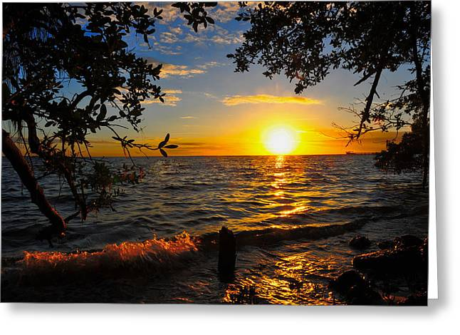 Charlotte Greeting Cards - Charlotte Harbor Quiet Greeting Card by Christopher Blake