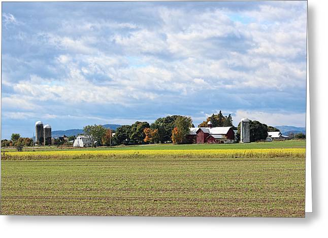 Charlotte Vermont Greeting Cards - Charlotte VT Farm Greeting Card by William Alexander