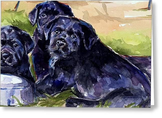 Black Labrador Retreiver Greeting Cards - Charm School Greeting Card by Molly Poole