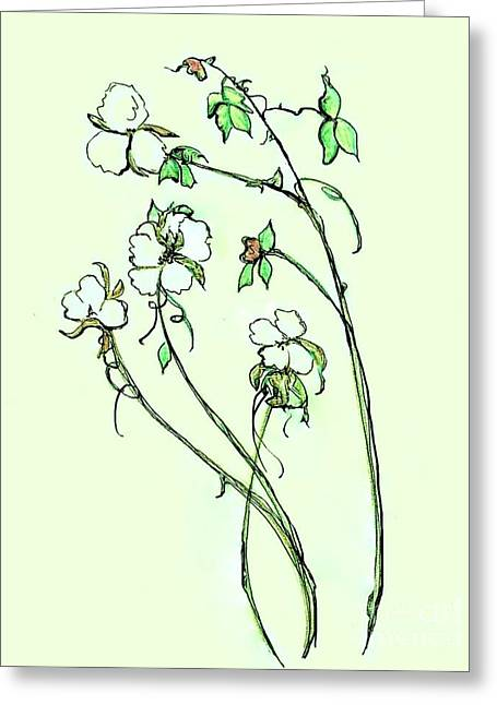 Tennessee Farm Drawings Greeting Cards - Charming Cotton Bolls Greeting Card by Eloise Schneider