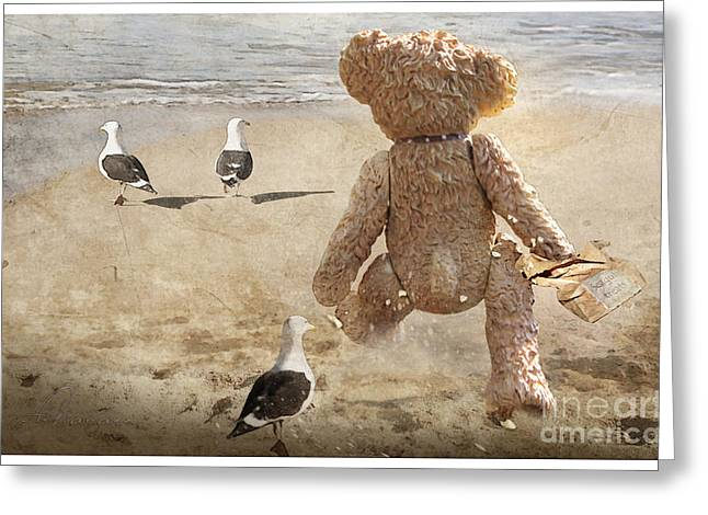 Adelita Rog Greeting Cards - Chasing After Seagulls Greeting Card by Adelita Rog