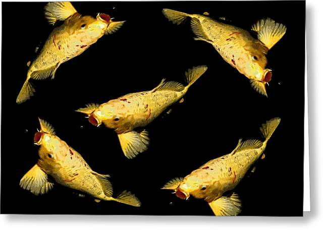 Goldfish Digital Greeting Cards - Chasing Bugs Greeting Card by Ernie Echols