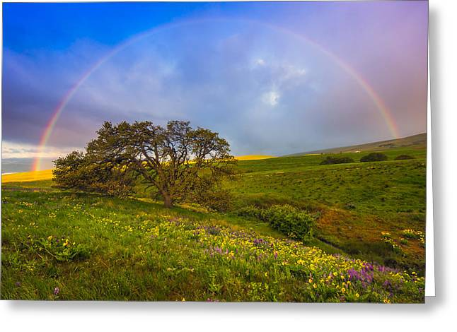 Rainbow Photographs Greeting Cards - Chasing Rainbows Greeting Card by Joseph Rossbach