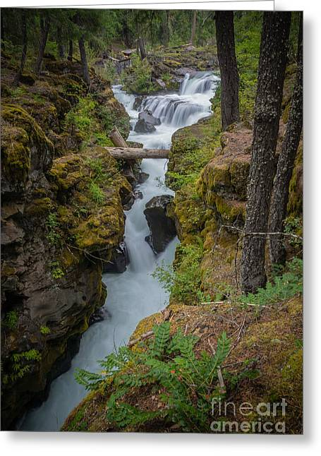 Cole Greeting Cards - Chasm Greeting Card by Carrie Cole