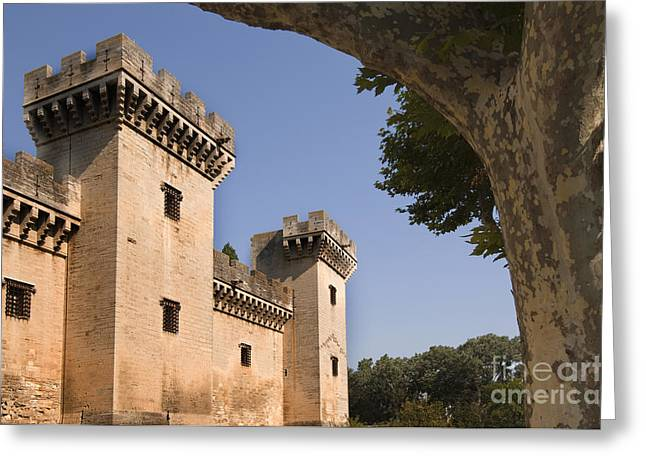 Chateau Greeting Cards - Chateau Of King Rene, France Greeting Card by John Shaw