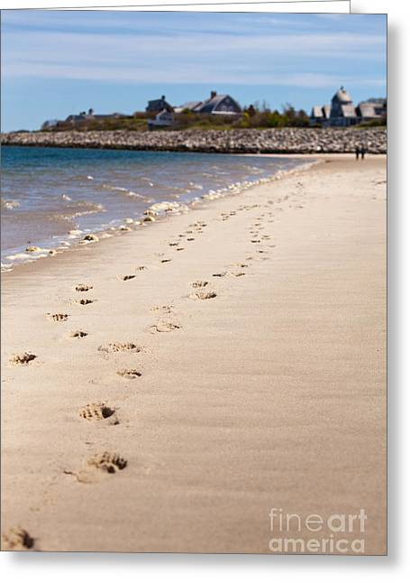 Chatham Greeting Cards - Chatham Beach Stroll Greeting Card by Lisa Cranshaw