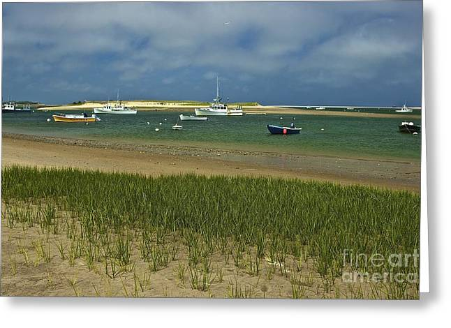 Chatham Greeting Cards - Chatham Harbor Greeting Card by Amazing Jules
