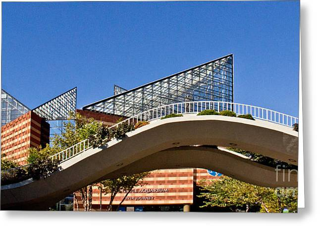 Tennessee Landmark Greeting Cards - Chattanooga Aquarium Panoramic Greeting Card by Tom Gari Gallery-Three-Photography