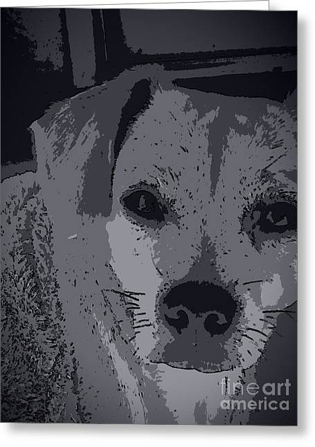 Pound Puppies Greeting Cards - ChEagLe EyES Greeting Card by Angela J Wright
